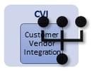 sap-business-partner-mapeo