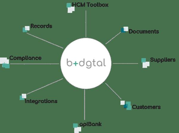 b+dgtal Suite Grafico II