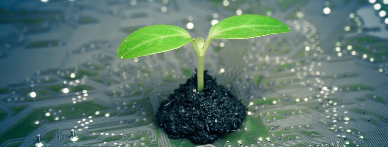 Il digitale è un fattore chiave per la sostenibilità