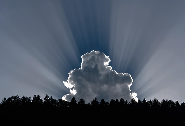 webinar_cloud-1