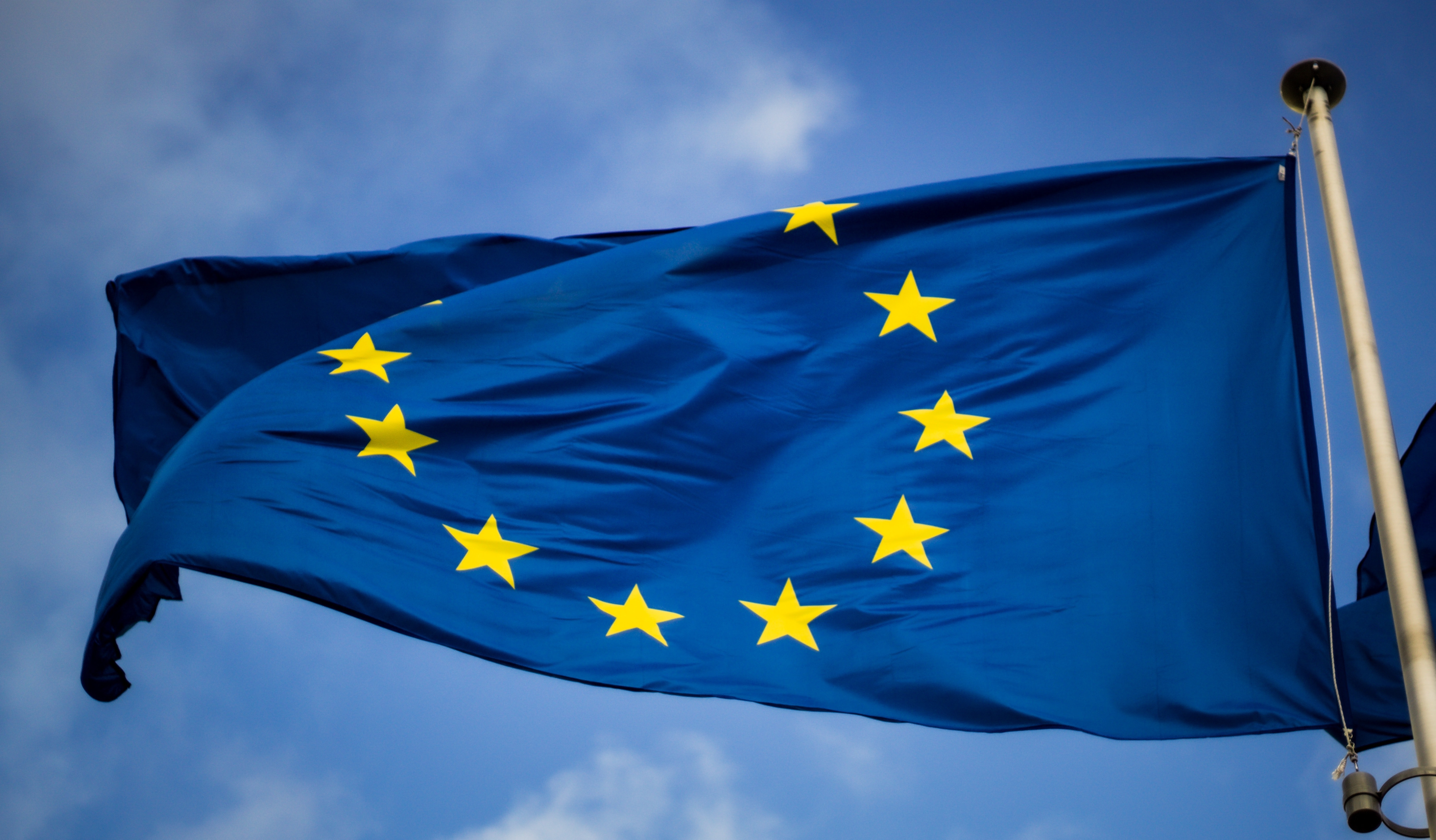 La suite de software b+dgtal ya es marca registrada en la Unión Europea